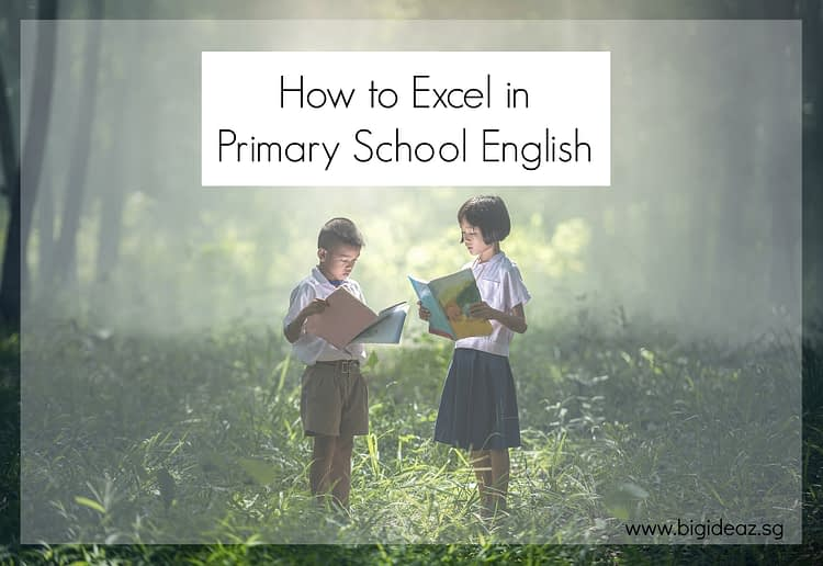 Excel in Primary School English